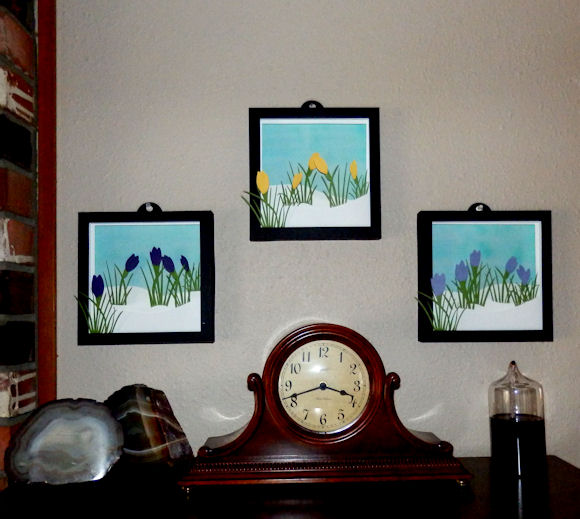 Crocus shadow boxes