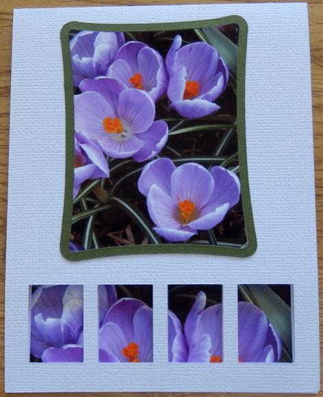 GS card 4
