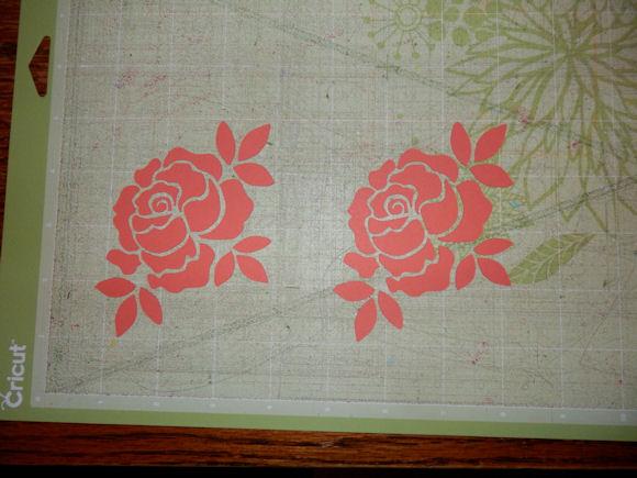 Rose on matt