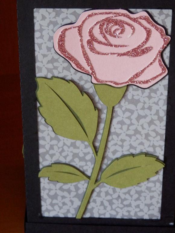 Rose Lantern Vellum Background