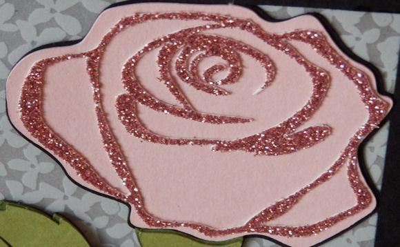 Rose Lantern Rose Close Up